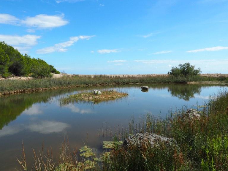 La llacuna de la Cala Justell