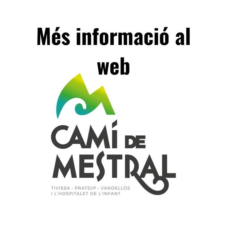 Web Camí.jpg